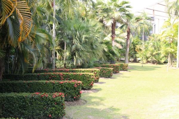 สวนรีสอร์ท,จัดสวน,การจัดสวน