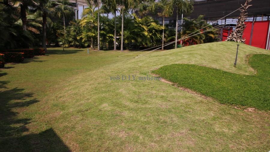 ดูแลสวน,ดูแลสนามหญ้า,การจัดสวน