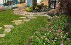 เคล็ดไม่ลับกับวิธีการดูแลสวนในหน้าร้อนสำหรับคนรักการจัดสวน